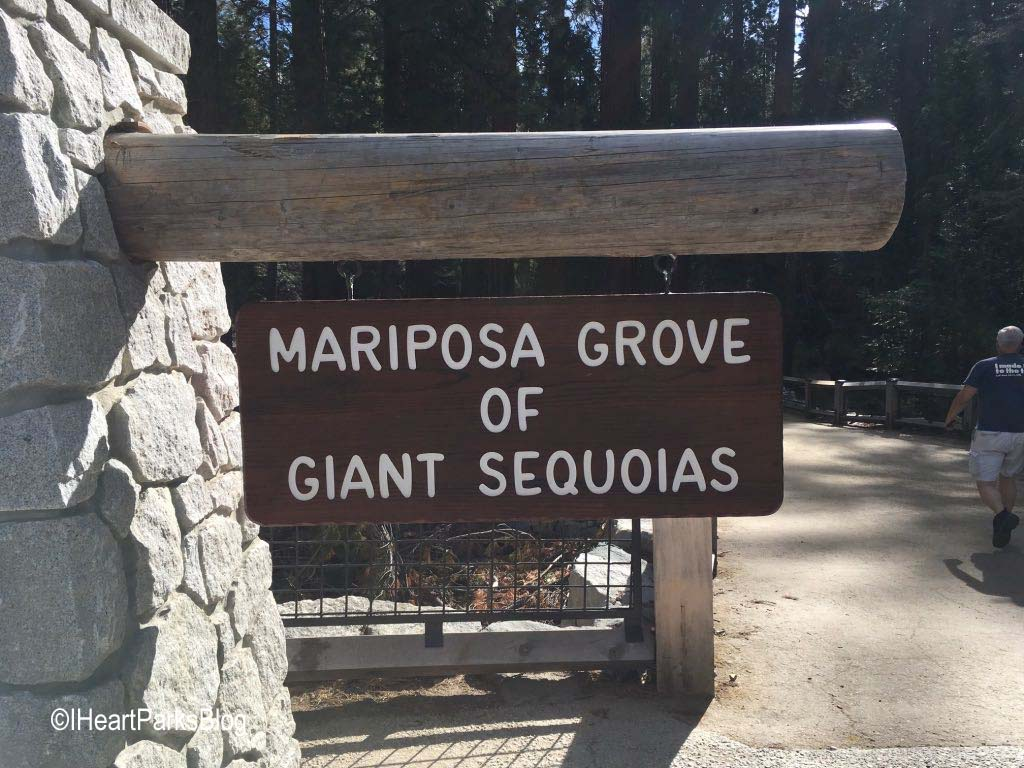 Mariposa Grove Sign